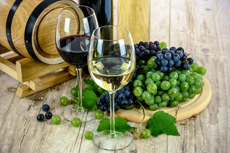 vīna kursi iesācējiem rīgā